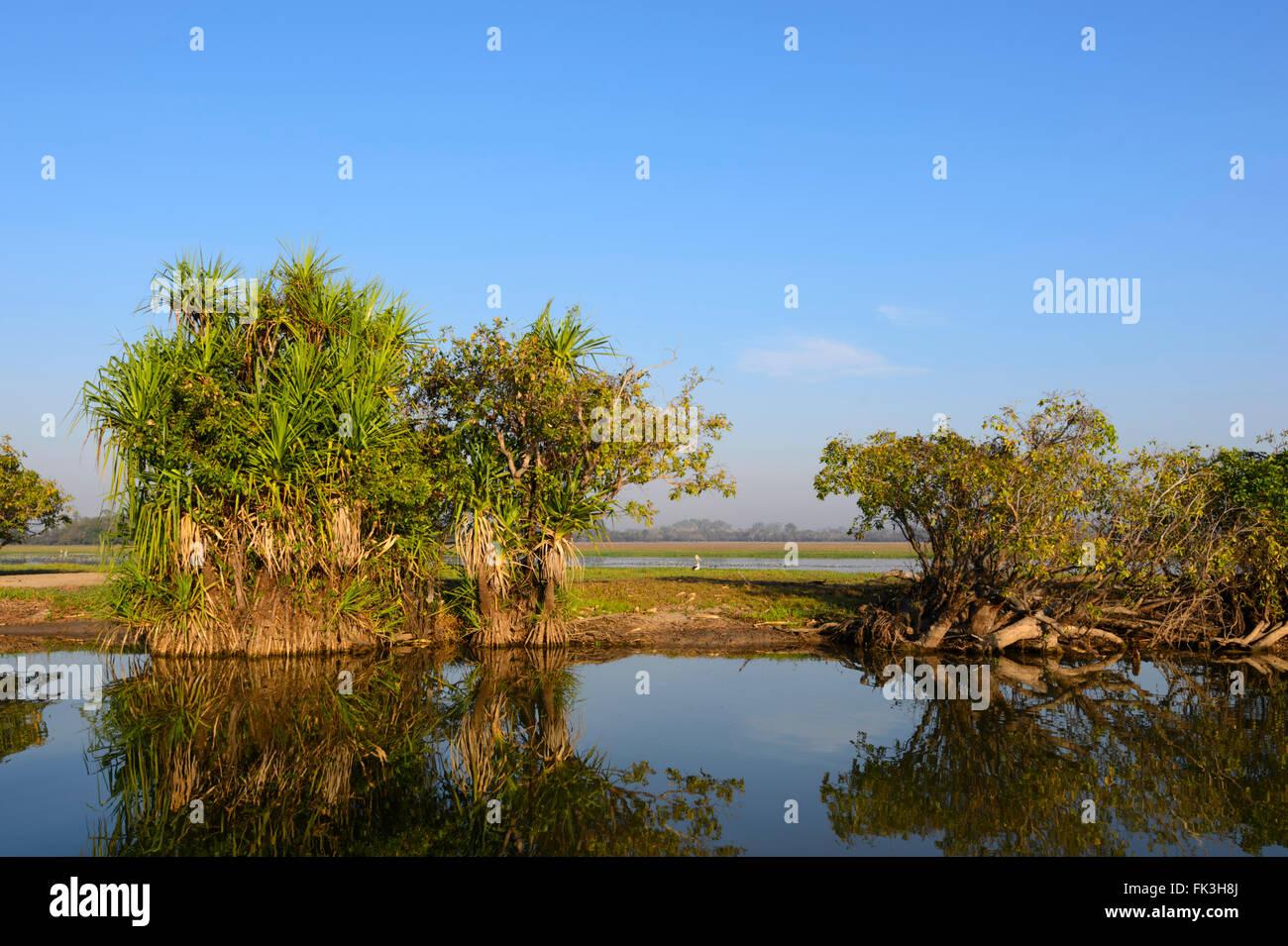 yellow-water-billabong-kakadu-national-p