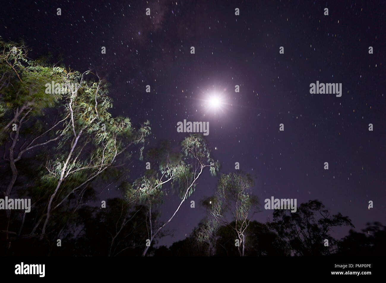 night-sky-over-emu-creek-near-petford-no