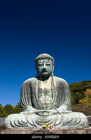 Great Buddha at Kotokuin Temple Kamakura in Japan Nov - Stock Image