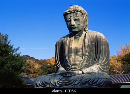 Japan, Tokyo, Kamakura, Daibutsu, The Great Buddha with Autumn Leaves - Stock Image