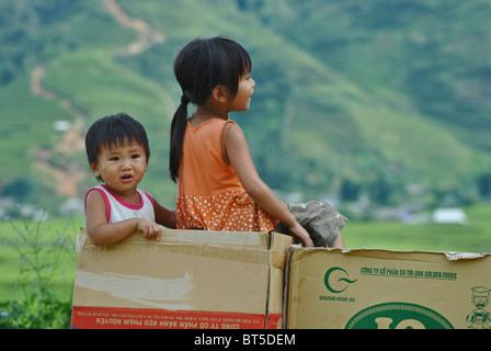 Young vietnamese children in a cardboard box near Sapa, Vietnam - Stock Image