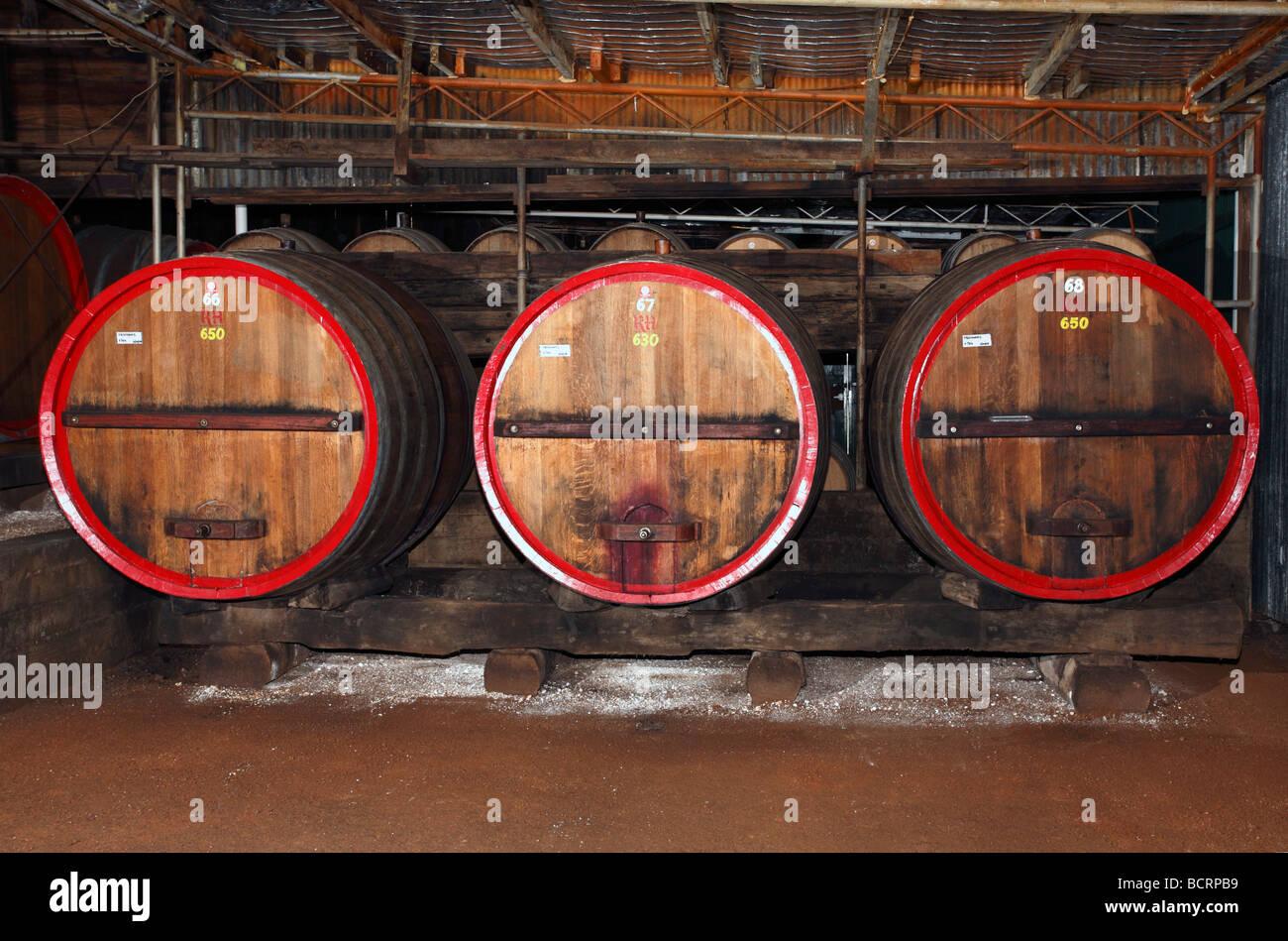 wine-cellar-at-tyrrells-winery-hunter-valley-australia-BCRPB9.jpg