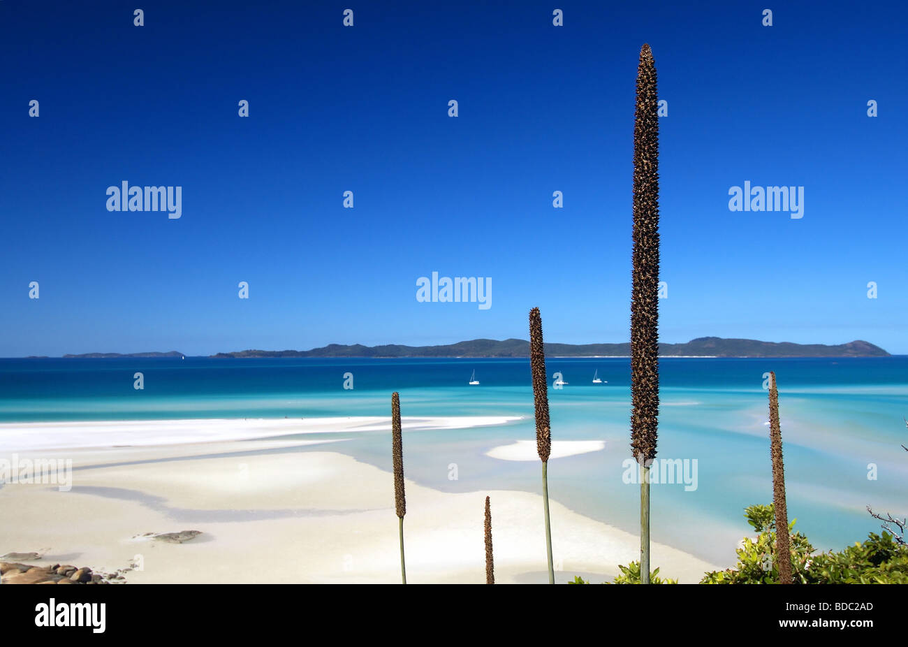 Hill Inlet, Whitsunday Islands National Park, Queensland, Australia Stock Photo