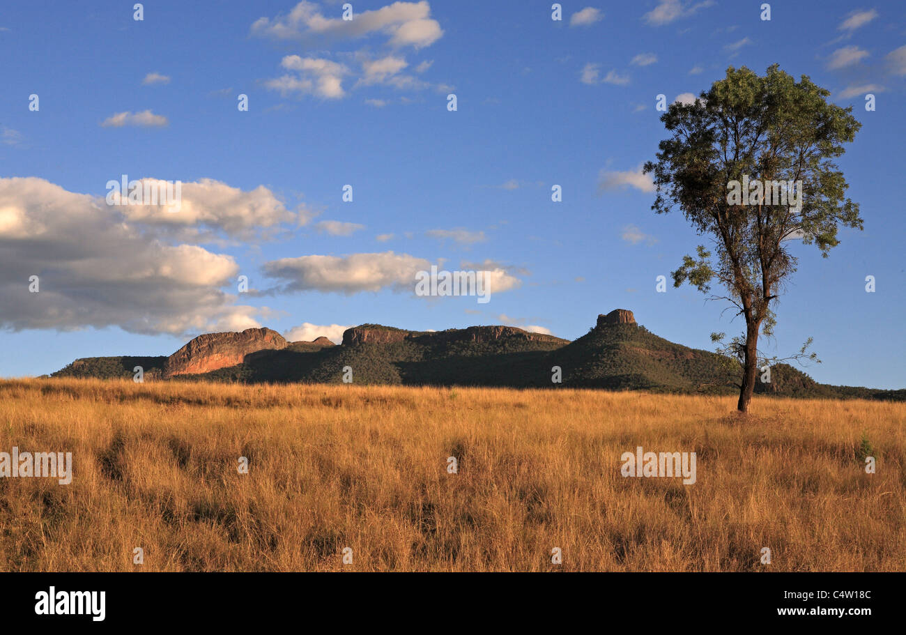 mt-kaputar-national-park-near-narrabri-western-nsw-australia-is-part-C4W18C.jpg