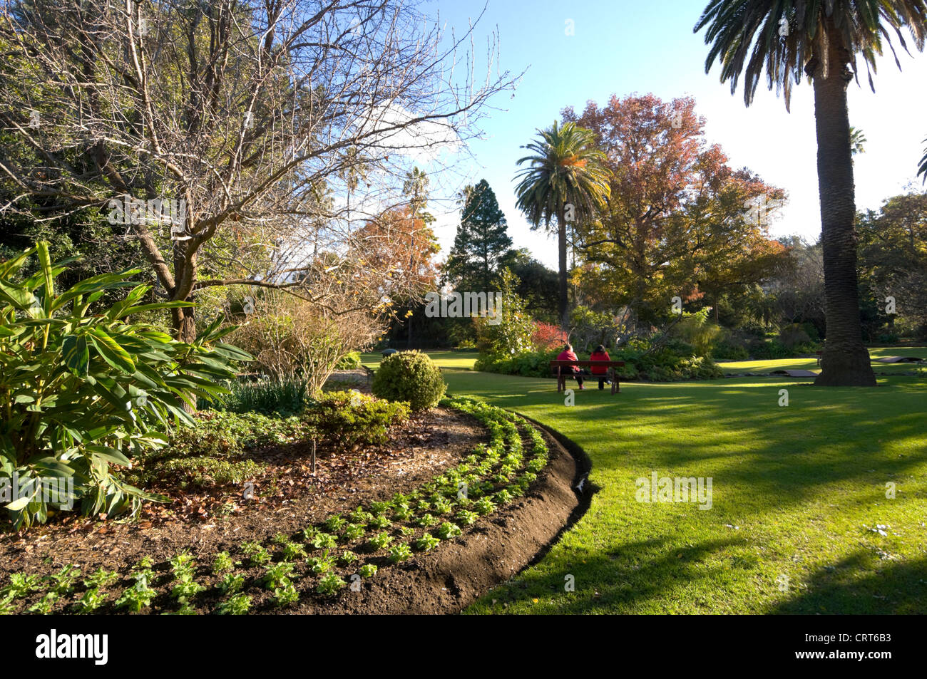 botanic-garden-albury-new-south-wales-au