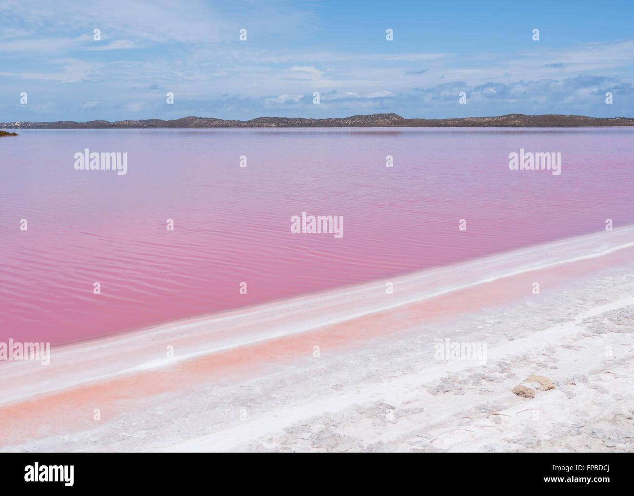 hutt-lagoon-pink-lake-containing-beta-ca