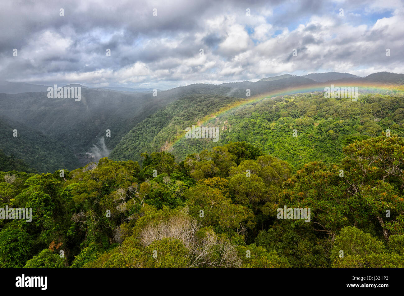 rainbow-over-the-canopy-of-pristine-trop