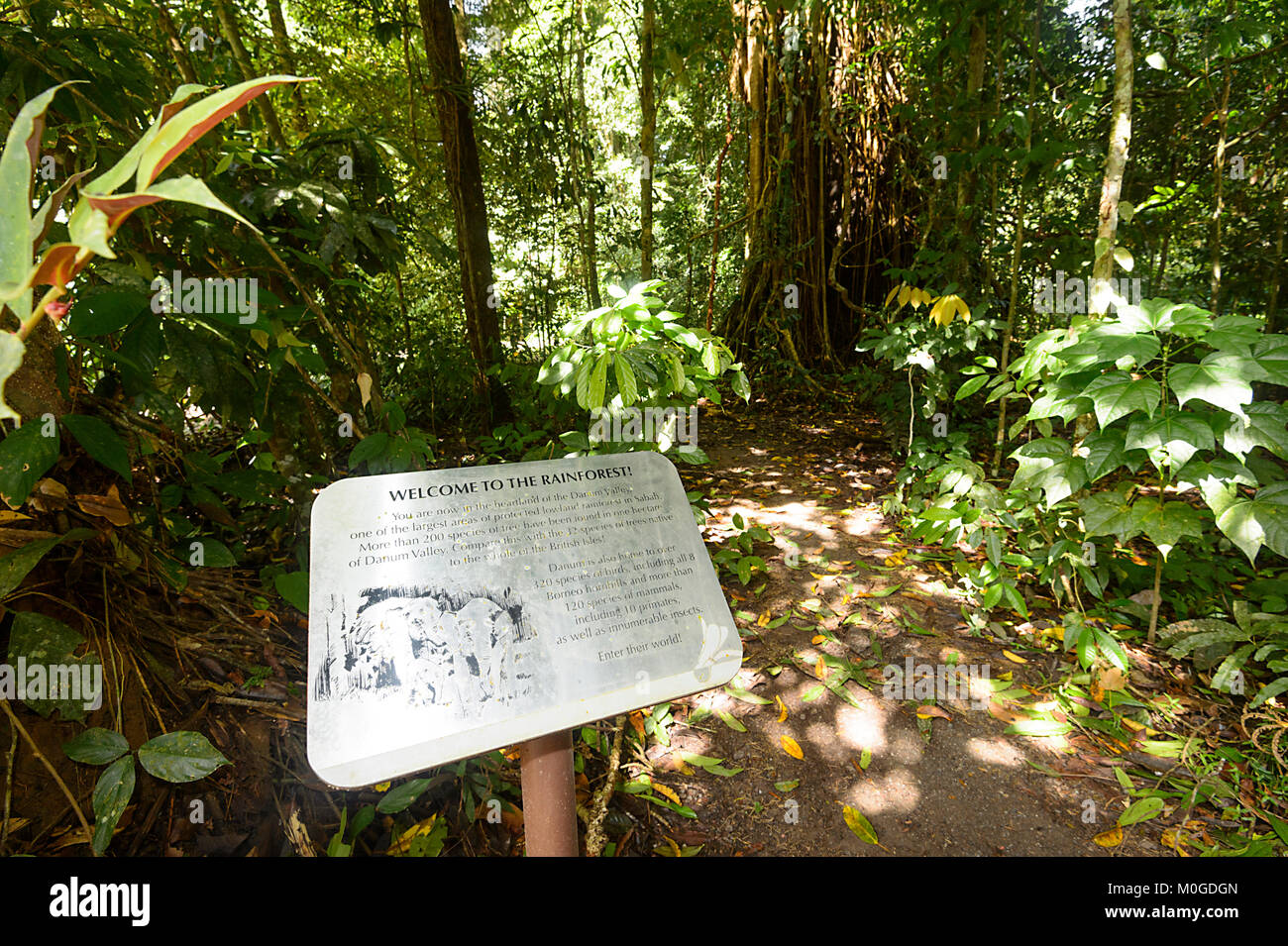 welcome-to-the-rainforest-sign-danum-val