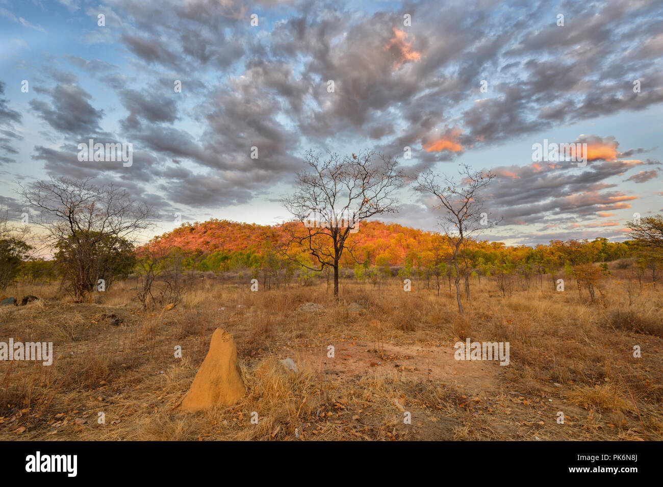 atmospheric-sunrise-in-the-outback-at-ch
