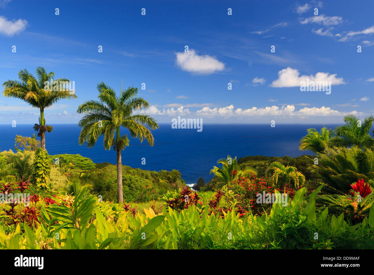 ocean-view-from-the-garden-of-eden-maui-