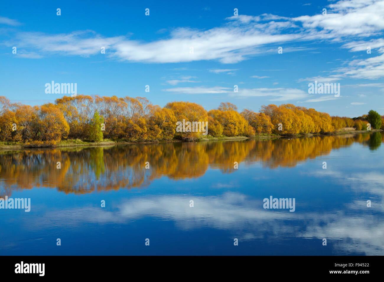 autumn-colour-and-clutha-river-at-kaitan
