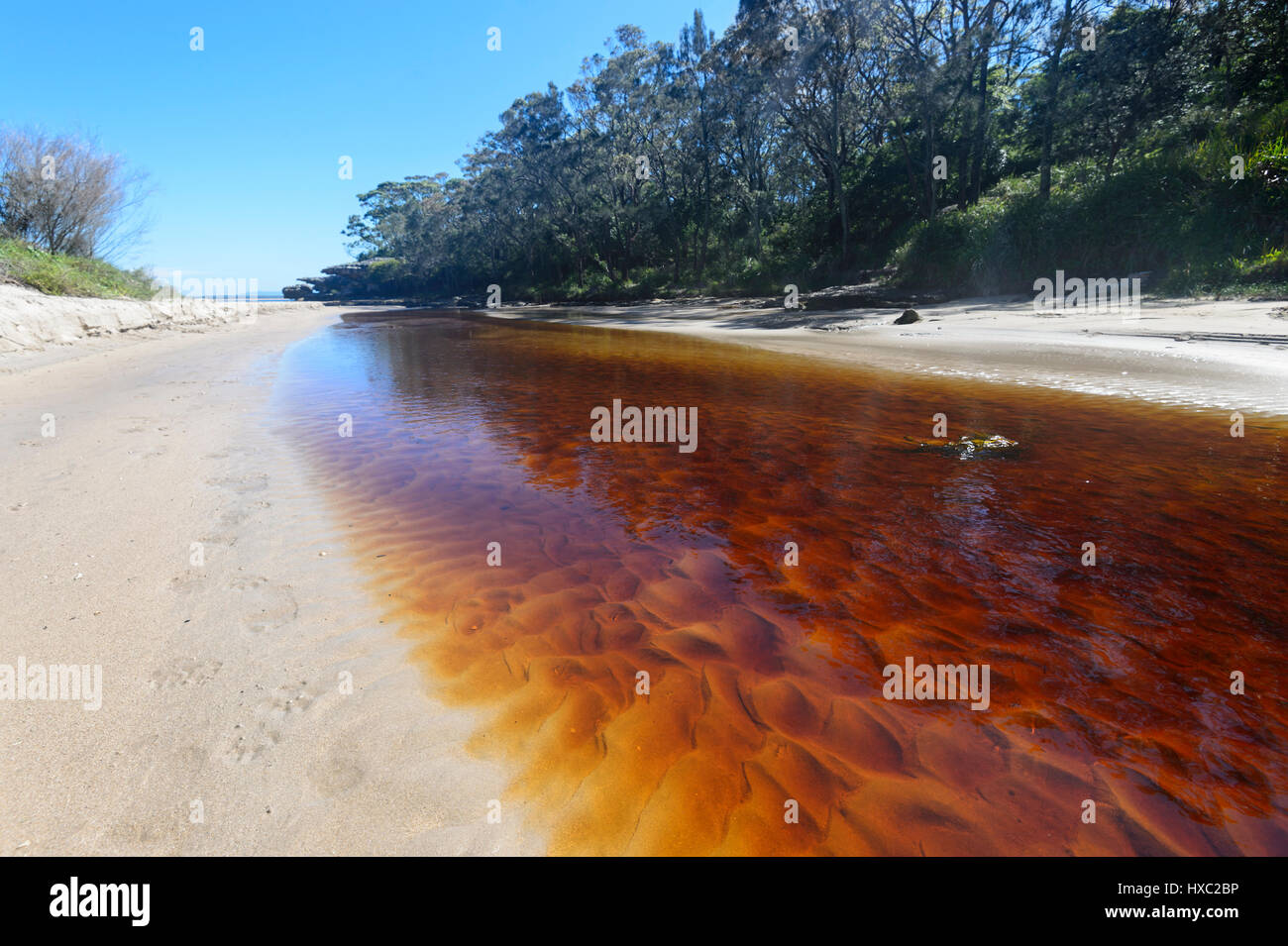 tannin-stained-creek-flowing-into-the-se