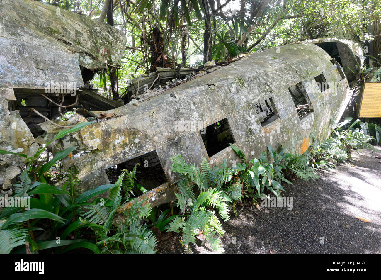 wreck-of-a-c-47-dl-a-military-version-of