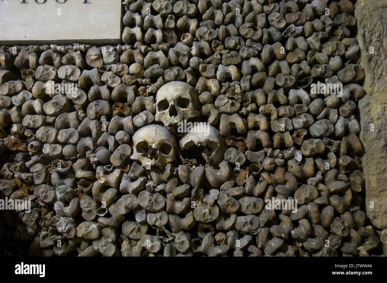 skulls-and-bones-decorating-the-walls-of