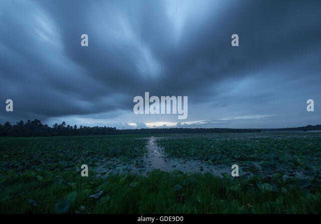 monsoon-clouds-seen-over-vellayani-lake-