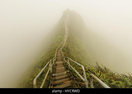 Haiku Stairs is a slippery and secretive hike on oahu - Stock Image