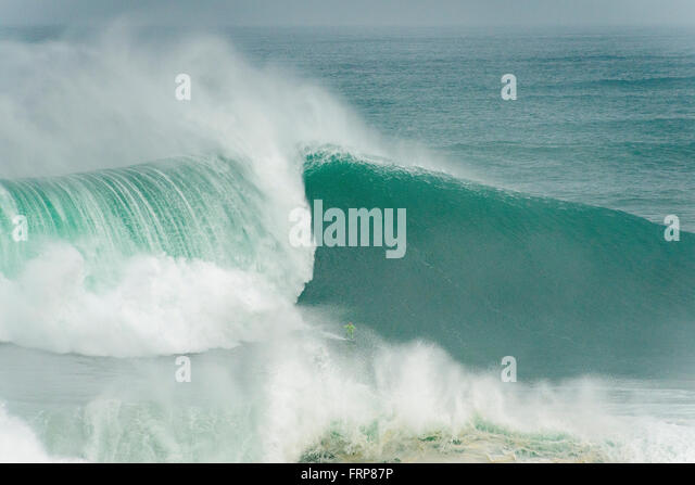 surfer-on-a-big-wave-frp87p.jpg