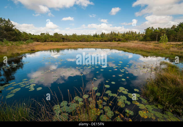 moor-landscape-with-a-lake-near-henne-be